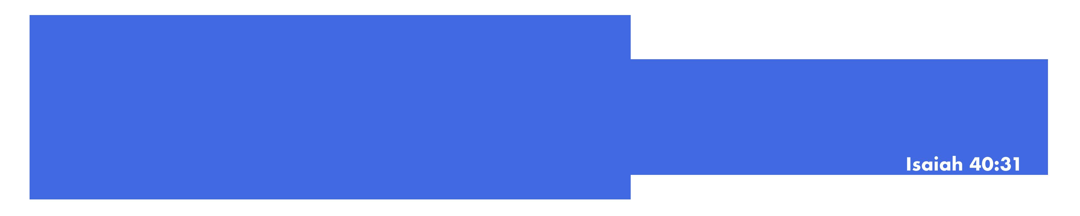 Wings Flight Academy Logo